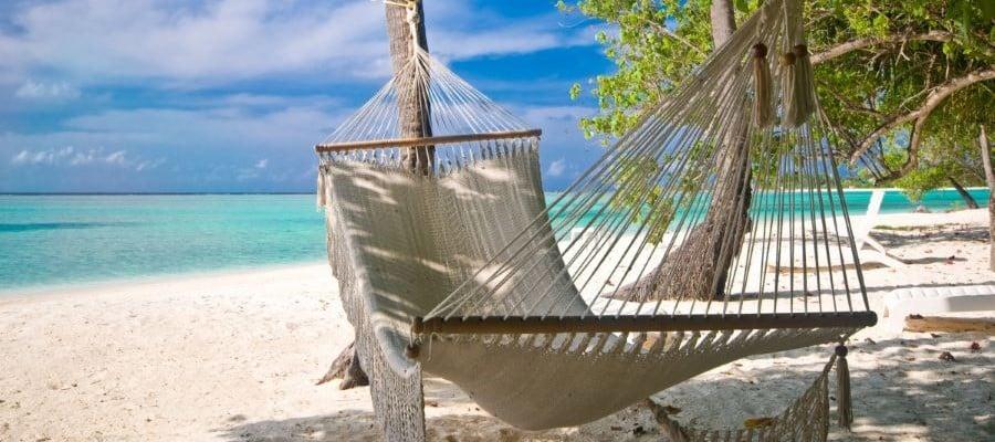 Safari & Strand Vakantie In Zuid-Afrika & Mozambique