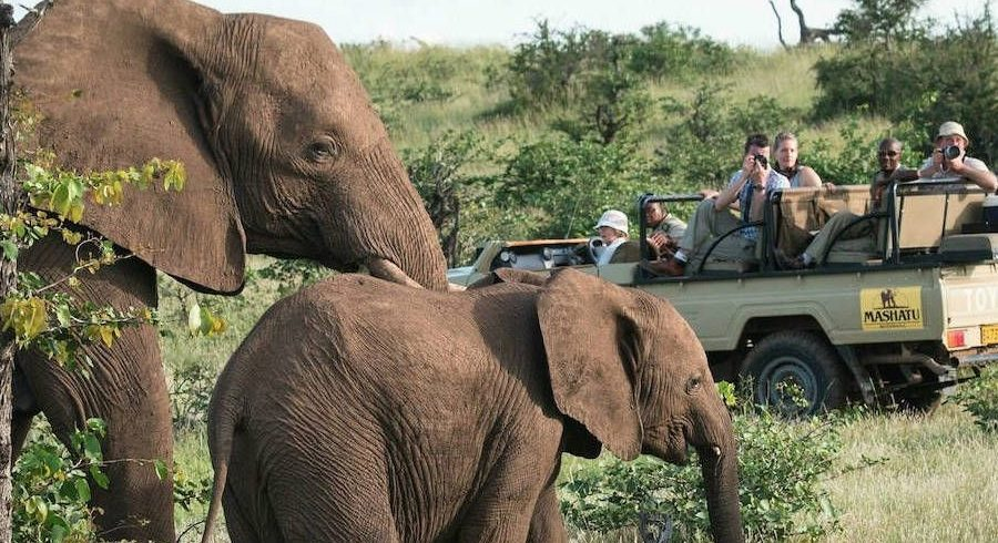 Groepsreizen Naar Zuid-Afrika